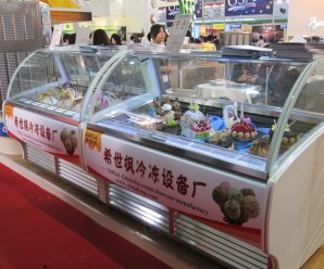 ice cream display freezer singapore