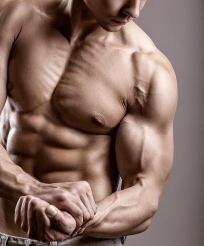 bestellen Bodybuilding